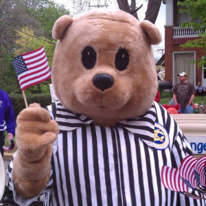 Time Out Teddy waving flag